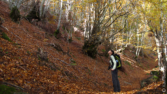 Val d'Aran © Xavi Basora