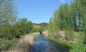 Ruta Comabella