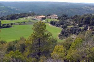 Ruta Puig de Comabella