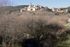 Rutes per les Muntanyes de Prades, Capafonts